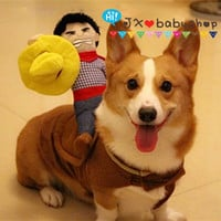 2015 New Newest Pet Dog Riding Horse Costume Novelty Funny Cowboy Halloween Clothing Clothes