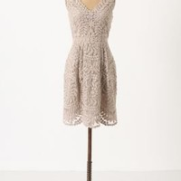 Veiled Alder Dress - Anthropologie.com