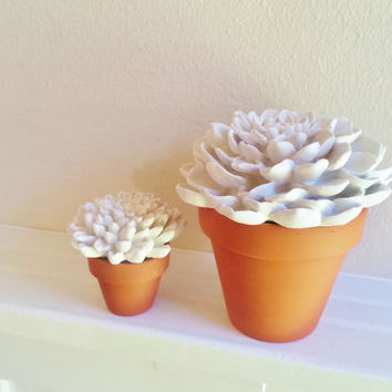 White Flower Sculptures in classic garden flower pots, Minimalist floral arrangement, modern floral