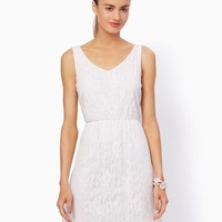 Lillian Lace Summer Dress | Fashion Apparel and Clothing | charming charlie