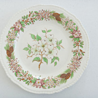 Dogwood Brown Transferware Plate Jonroth England