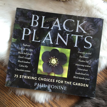 Black Plants by Paul Bonine