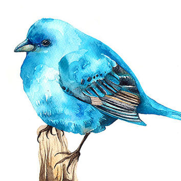 Bluebird Watercolor Illustration Print Birdie Blue Brown Feather Nature Home Decor