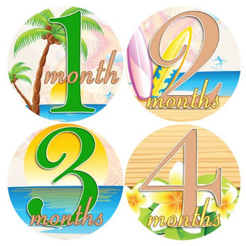 CARIBBEAN 1-12 Month Baby Monthly One Piece Stickers Baby Shower Gift Photo Shower Stickers