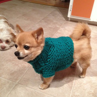 Hand Knit Chihuahua Sweater Little Dog Chunky Turtleneck Swetaer Aqua Blue/Green Dog Jumper Dog Clothing Dog Apparel Pets Clothing