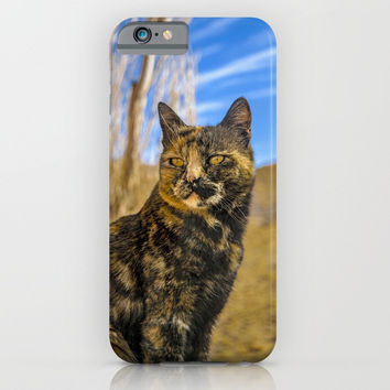 Adult Wild Cat Sitting and Watching iPhone & iPod Case by DFLC Prints