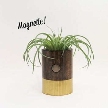 Magnetic Air Planter, Wood Planter, Air Plant Holder, Modern Planter, Unique Planter, Rustic Planter, Indoor Planter, Gold Planter