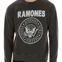 Amplified Grey Printed Ramones Sweatshirt* - Mens Hoodies & Sweatshirts - Clothing