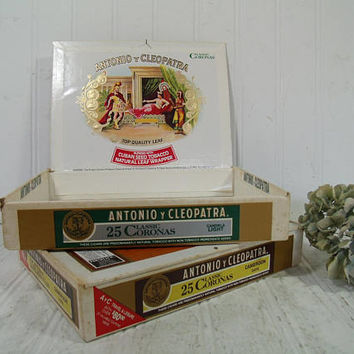 Shallow Cigar Boxes Set of 2 Antonio y Cleopatra Classic Coronas Ornate Graphics Cigar Boxes - Boxes for Display Art Projects & Organization