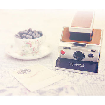 still life photography, camera photograph, blueberry photograph, food photography, polaroid camera, polaroid, feminine, romantic, purple