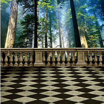 600CM*300CM background Stands tall trees photography backdropsvinyl photography backdrop 3337 LK