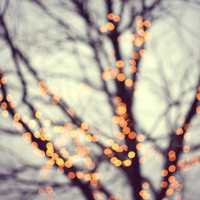 Fine Art Photography, Winter Holiday Decor, Tree Wall Art, Surreal Art 'Turn Into Stars'