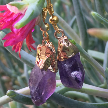 Amethyst Crystal Earrings #H1016
