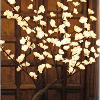 The Light Garden Lighted White Bonsai Tree 128 Lights|BNSWT128 at livingcomforts.com