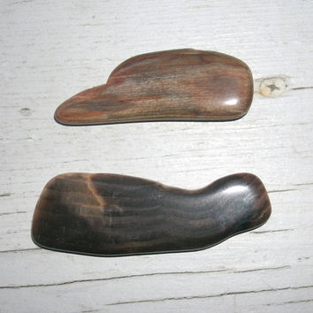 Polished Petrified Wood, freeform shape, wire wrapping pieces, jewelry supply, craft supply, collections, 1 dark brown, 1 light brown, wood
