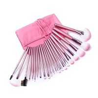 Professional Pink Cosmetic 22pcs Makeup Brush Set with Case