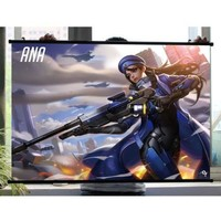 Overwatch Ana Captain Amari Wall Scroll Poster 45x60cm