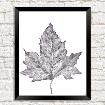 Pencil sketch, Leaf Art Print, Graphite drawing of my Original sketch, nature drawing, Graphite sketch, black and white art
