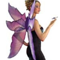 Purple and Silver Fairy Wings