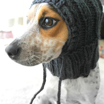 Knit dog cowl, small dog hoodie, pet scarf, pet clothes, dog sweater