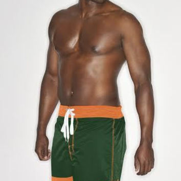 NCAA Miami Hurricanes G-III Mens Board Shorts