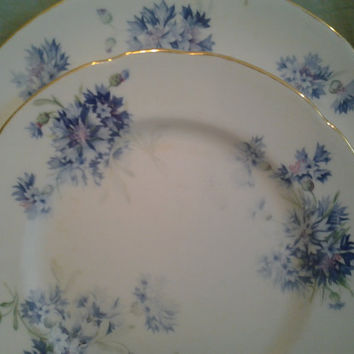Vintage China English Bone China CORNFLOWER Hammersley & Co T Goode Shabby Chic Blue Floral Plates dinner plate bread plate dessert plate