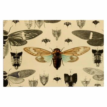"Suzanne Carter ""Vintage Cicada"" Bugs Pattern Decorative Door Mat"