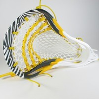 "Featured ""Zebra"" Dye Complete Head 
