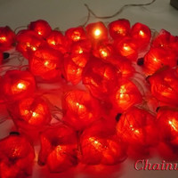 35 RED ROSE FLOWERS STRING PARTY,PATIO,FAIRY,DECOR,BEDROOM,HOME,WEDDING LIGHTS