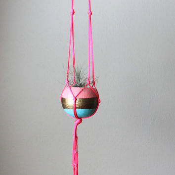 Neon Pink Macrame Air Plant Hanger with Tillandsia - Aqua, Gold, Pastel Pink and Neon Pink