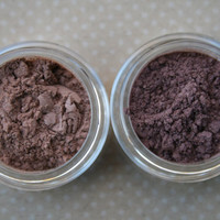 Pretty Reckless Two Color Kit by TheCopperBeeCosmetic on Etsy
