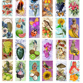 Spring images 1x2 inches nature clip art digital download graphics collage sheet printables butterflies flowers girls women fruit flowers