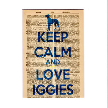 Matted 5x7 'Keep Calm and Love Iggies' - Blue - FREE SHIPPING - German Dictionary Art Print - Mat Size 8x10