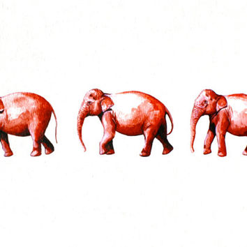 Watercolor Painting  Archival Print  The Elephant by RiverLuna