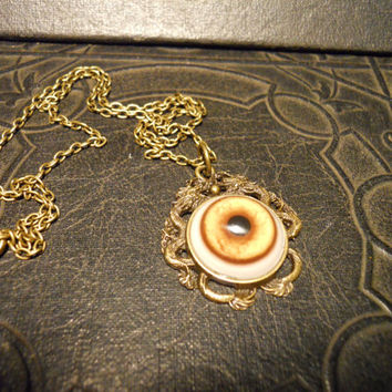 Double Dragon Glass Taxidermy Coyote Eye Necklace