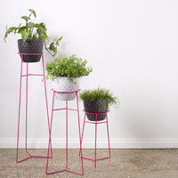 Collected & Trestle Union Plant Stands | Tickle Pink