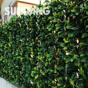 Outdoor Decorative Artificial Boxwood Hedges Panel 24Pcs 25Cm By 50Cm Sgs Sythenic Boxwood Mats Garden Fence Indoor Decoration