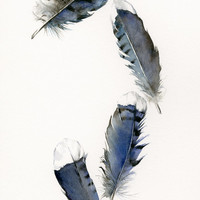"watercolor feathers, feather art -Blue Jay Feathers - 13 x 19"" Archival print, minimalist, blue, bird feathers, natural home decor"