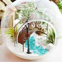 Bridge in Central Park Terrarium ~ Snow White Sand, Bridge and Lamp post ~ Airplants - Glass Round Globe ~ Magical ~ Wintery ~ Gift Idea