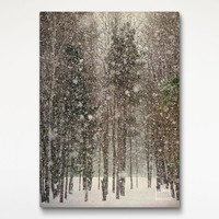 Snowfall Landscape Canvas Print, Landscape Photo, House Wall Art, Nature Art Decor