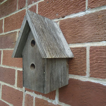 Weathered Cedar birdhouse - Rustic birdhouse - Weathered wood - Outdoor birdhouse - Two hole birdhouse - Wren house - Cedar wood birdhouse