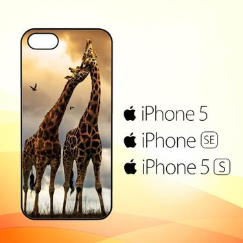 giraffes photography Y1663  iPhone 5|5S|SE Case