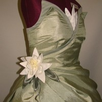 Adult Princess and the Frog Custom Costume