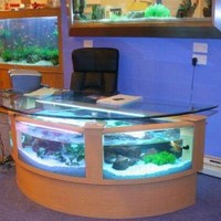 110 gal half circle shape desk aquarium, fish ready with everything