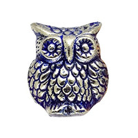 Wise Old Owl Metal Drawer Dresser Cupboard Pull Knob - Silver Finish with Blue