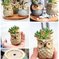 Six (6) Glazed Ceramic OWL Succulent Planter Pots SET