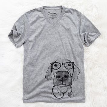 Leroy the German Shorthaired Pointer  - Medical Collection