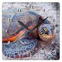 Cute Fun Friendly Hawaii Sea Turtle Close-up Photo Square Wall Clock
