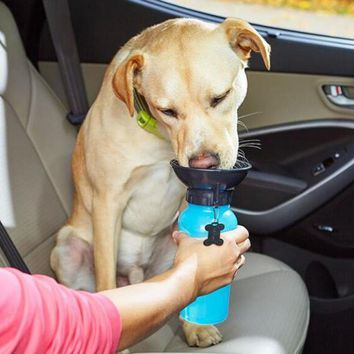 Dog Water Bottle Feeder With Bowl 500ml