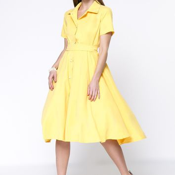 Casual Solid Button Through Turn Down Collar Skater Dress